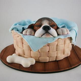 "Torta ""Cachorro durmiendo"""