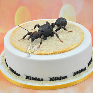 Messor Barbarus Cake for Birthday