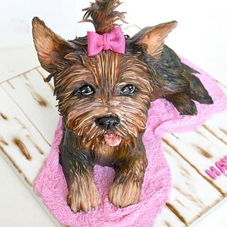 London the Yorkie  - Cake by Hemu basu