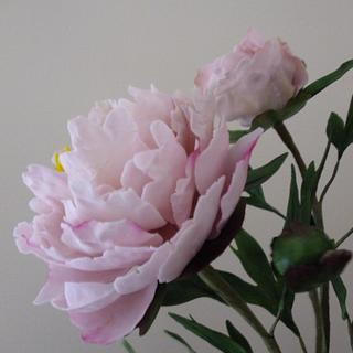 Pretty pink peonies - Cake by Shenelle Robson