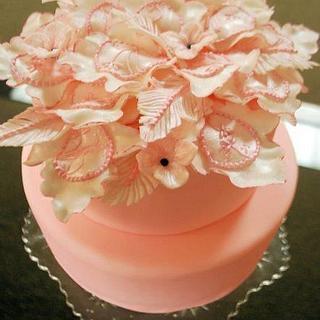 Pink feather - Cake by JenStirk