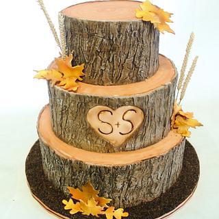 Automnal bark wedding cake