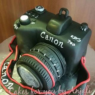 Cannon camera cake