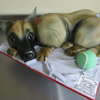3D German Shepherd dog cake - Cake by Shanikah Fernando
