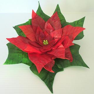 Wafer Poinsettia