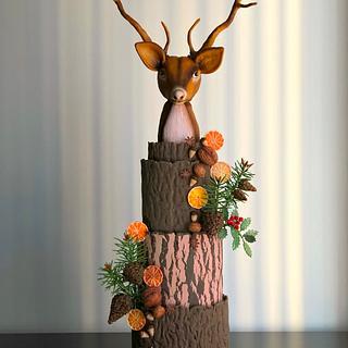 Winter cake!...
