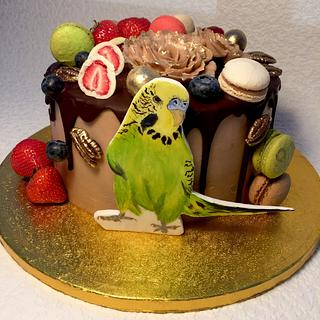 naked cake with parakeet - Cake by Andrea