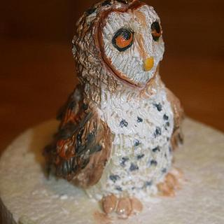 Modeling chocolate barn owl - Cake by Stacey Fruchey