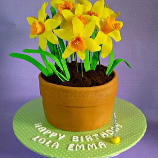 Flower pot cake for Emma