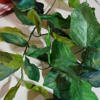 edible wafer paper foliage