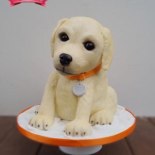 Anna the Puppy