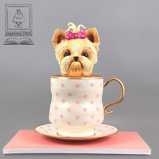 Dog in a tea cup