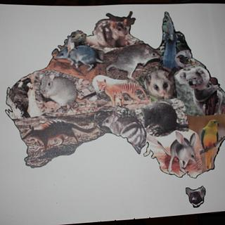 Aussies Take the Cake - Endangered/Extinct Animals and Birds