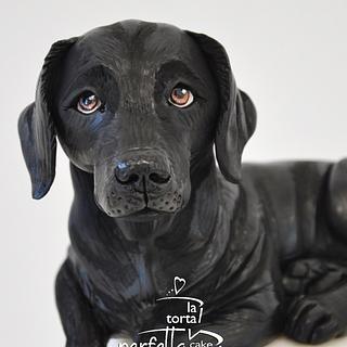 Labrador Retriever Dog Cake