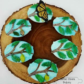 Metamorphosis  - Cake by Shannon @ Kitchen Witch Chronicles