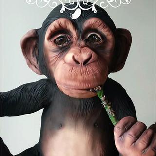 Monty The Chimp!!