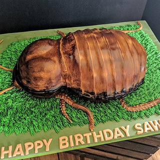 It's a bugs life!!! - Cake by Della Kelley
