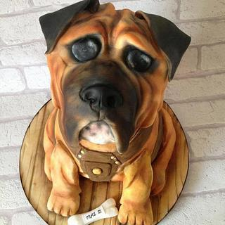 Archie the bulld dog 100% cake british bull dog cake