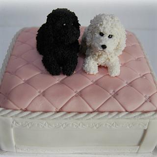 sweet poodles