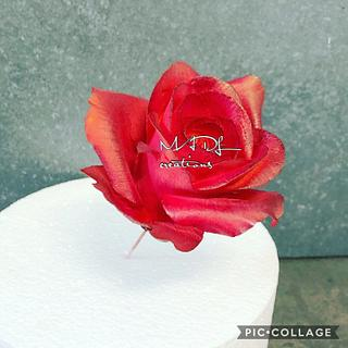 Rose flower paste  by MADL creations