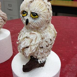 Modeling Chocolate Snowy Owl - Cake by Stacey Fruchey
