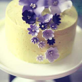 Lemon cake and cupcakes