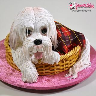 3D Puppy Dog in a Basket Cake - Cake by Serdar Yener   Yeners Way - Cake Art Tutorials
