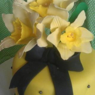 yellow and black daffodil