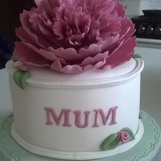 First ever Mothers Day Cakes