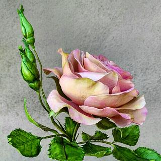Free formed rose and jasmine