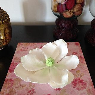 My first gumpaste magnolia (without cutters)