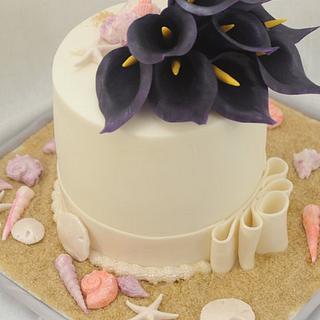 Fondant Cake Disaster Averted!!!!