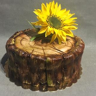 Sunflower Sunshine