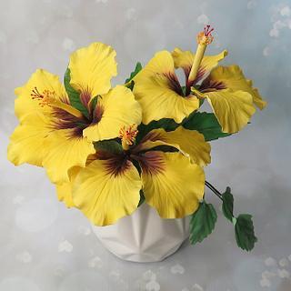 Yellow hibiscus sugar flowers