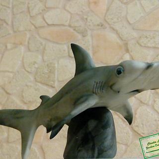 hammerhead shark  - Cake by Claudia Lucaroni