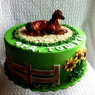 Cake with horse