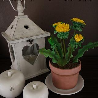 Dandelion made of gum paste and the pot of fondant...