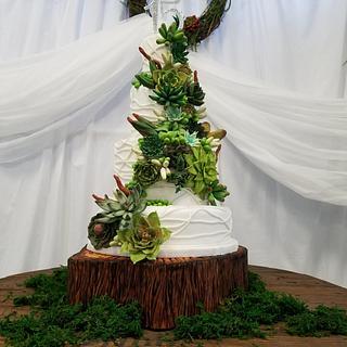 Succulent Sweet 15