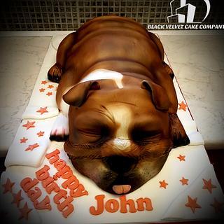 British bulldog cake