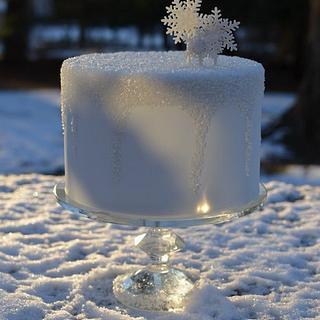 Icy Cake