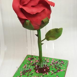 Red Valentine rose