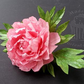 Wafer paper peony