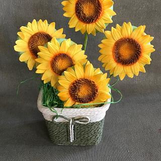 Sunflowers gingerbread cookies