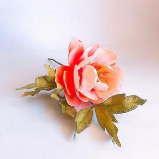 peony flower in Sugar art
