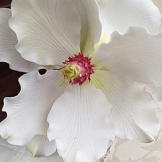 Magnolia on chocolate ganache