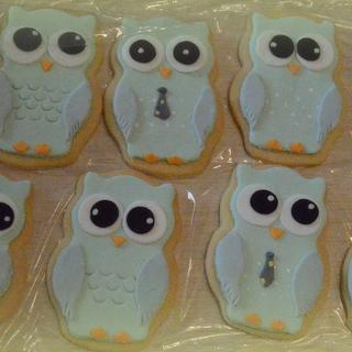 Owls cookies and cupcakes