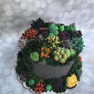 Succulent Single Tiered Cake