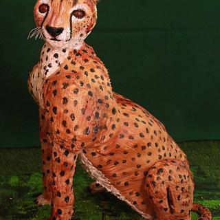 Gravity Defying Cheetah Cake