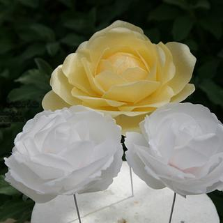 Wafer Paper Roses and Peony Rose