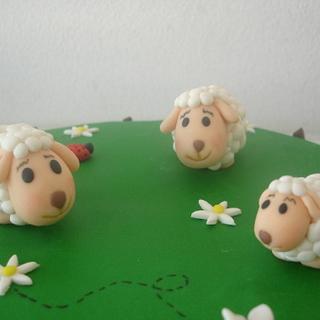 Sheep cake 1